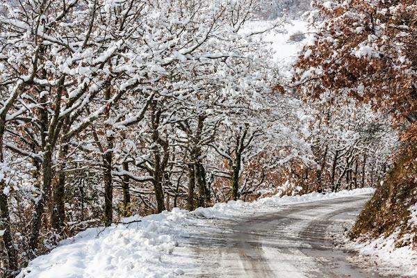 La strada sulla neve di giovix811