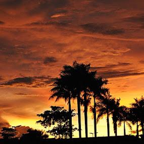 by Megarianti Megarianti - Landscapes Sunsets & Sunrises