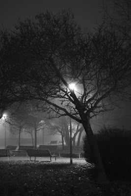 La notte. Il silenzio. Il buio. E finalmente il riposo.  di TNST