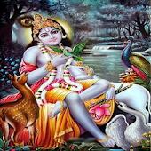 Lord krishna hindi bhajans free download