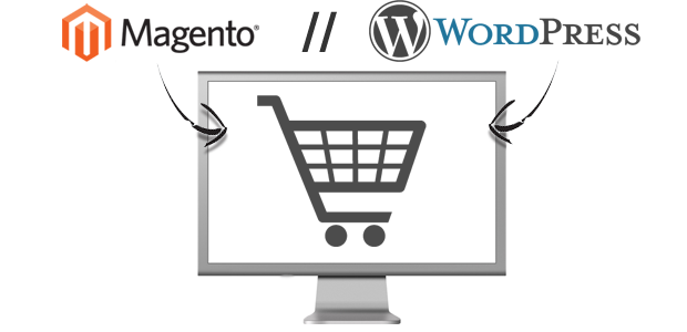 AN-Magento-WordPress-Ecommerce.png