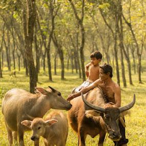Menggiring kerbau. by Suardhito Pratama - People Family ( dad with kids, dad and 'kid' )