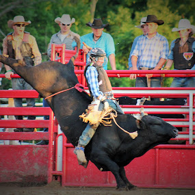 Jump Kicker by Brian  Shoemaker  - Sports & Fitness Rodeo/Bull Riding ( bull rider, winning, rank, cowboy, rodeo, bull,  )