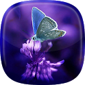 Butterflies Live Wallpaper 🎀 Moving Butterfly icon