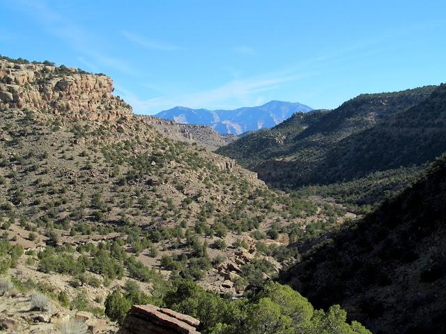 View down Turtle Canyon toward Range Creek