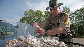 Stashville: Tennessee thumbnail
