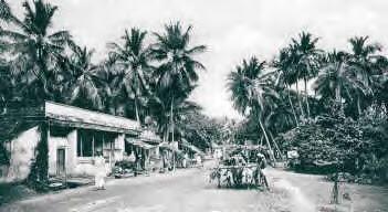 Photo: Triplicane High road - 1905