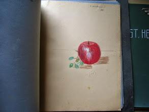 Photo: Nature morte exécutée par Eva Dickson. Cette pomme provenait-elle de Rectory Hill?
