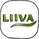LIIVA Download on Windows