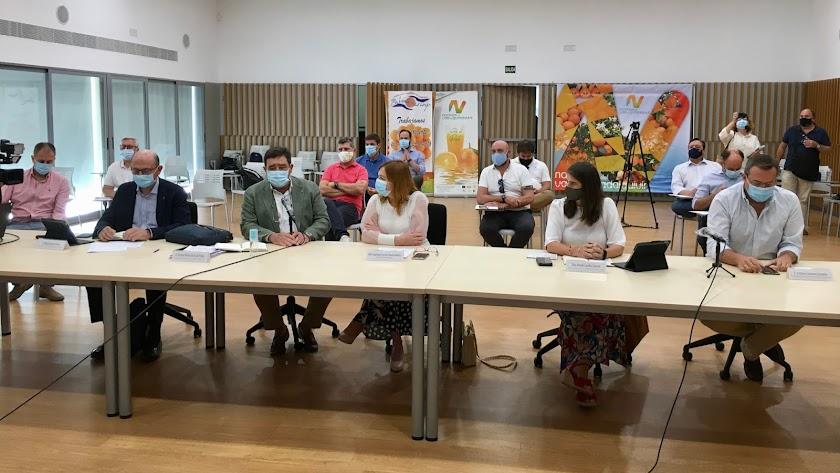 Vicente Pérez presenta el aforo de cítricos de Andalucía para la campaña 2020-2021.
