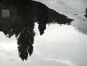 Photo: reflection in a puddle