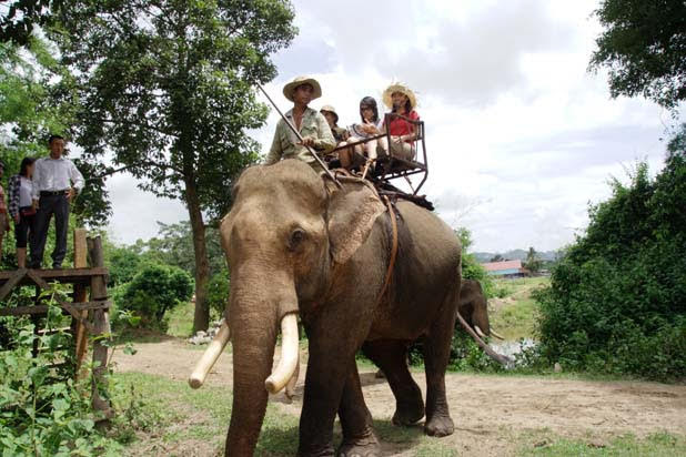 Elephant ride in Central Highlands