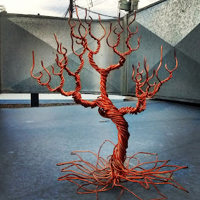 Lotustree by Brian Boyer - Artistic Objects Other Objects ( copper tree, recycled wire, forrestwire, wire tree )
