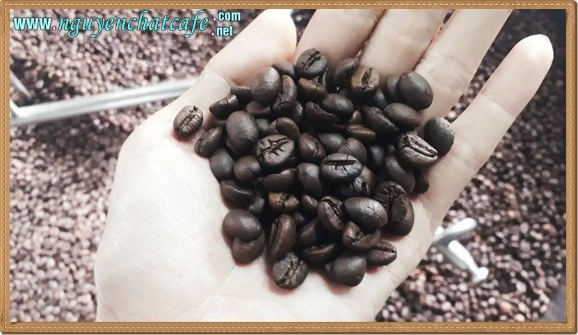 Rang cà phê nghệ thuật bắt nguồn từ đam mê
