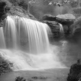 MISTY MORNING by Dana Johnson - Black & White Landscapes ( waterfalls, black and white, cascade, falls, landscape )