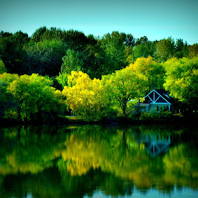 Scenic beauty by Awesome Pics - Nature Up Close Trees & Bushes ( water, reflection, nature, bushes, trees, reflections, people, places, architecture, building, , renewal, green, forests, natural, scenic, relaxing, meditation, the mood factory, mood, emotions, jade, revive, inspirational, earthly )