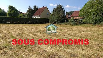 terrain à Walbourg (67)