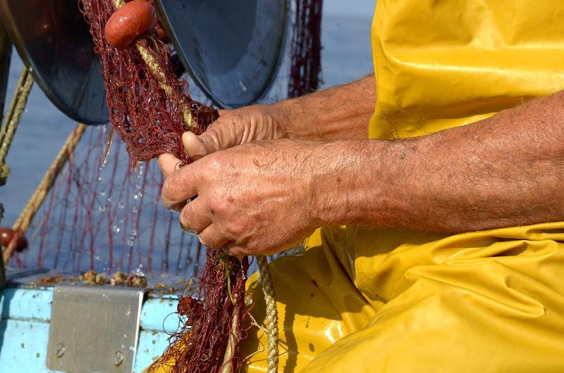 Le mani del pescatore di effemarini