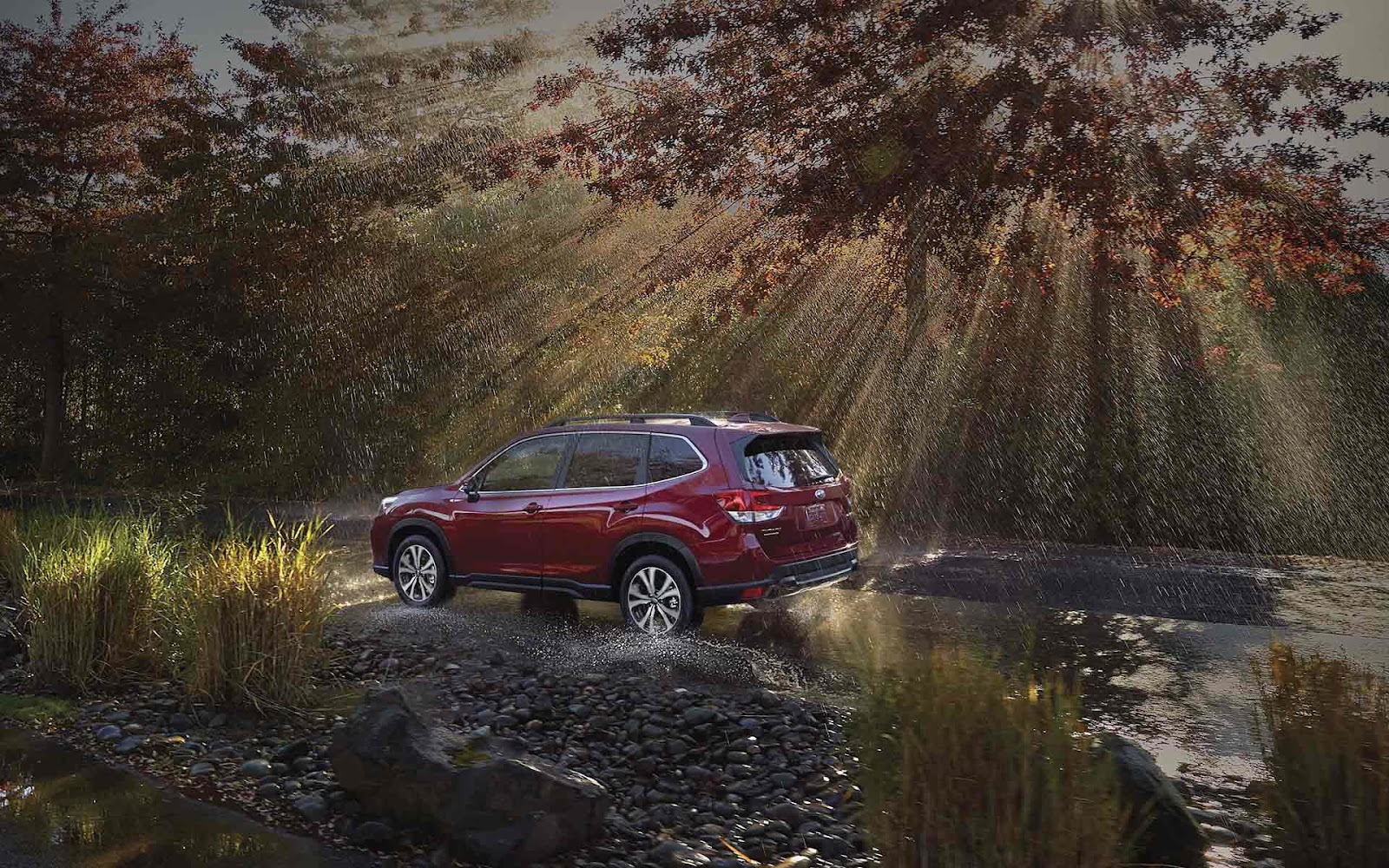 2019 Subaru Forester For Sale In Fayetteville, AR