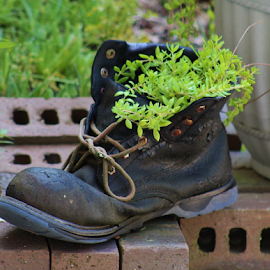Eric's Boot with Vine by Terry Linton - Artistic Objects Clothing & Accessories (  )