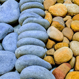 The pebbles by Nilkamal Laskar - Nature Up Close Rock & Stone