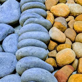 The pebbles by Nilkamal Laskar - Nature Up Close Rock & Stone