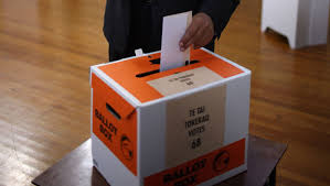 Image result for new zealand vote