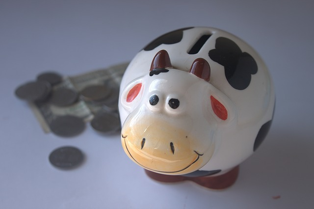 maxpixel.freegreatpicture.com-Save-Money-Bank-Savings-Coins-Piggy-Bank-Cash-390528.jpg