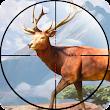Sniper Shooter: Animal Hunting