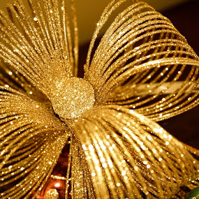 by Joelle McGraw - Public Holidays Christmas ( ornament, christmas, holidays, sparkle, gold, close up )