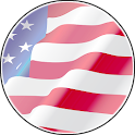 US Flag From Coins icon