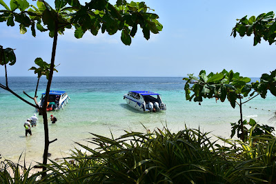 Private Phi Phi Island Speed Boat Tour by Sea Eagle from Krabi mainland
