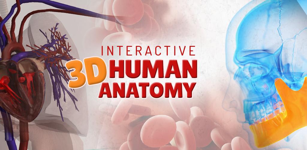 Download Menschlicher Körper Anatomie 3D - Kostenlos Apk Latest ...