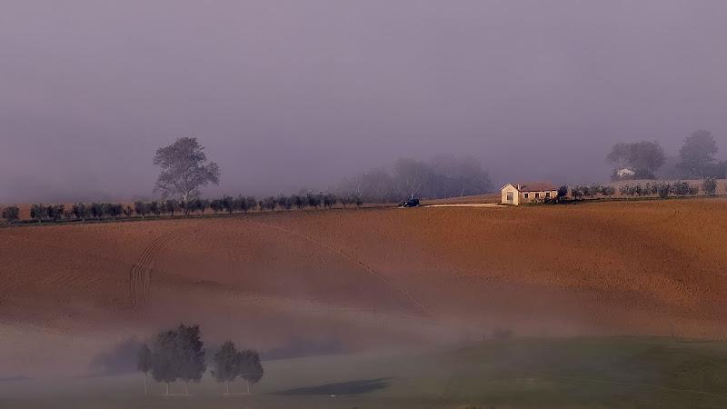 Toscana settembrina di alfonso gagliardi