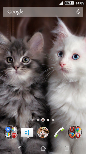 Fluffy Cats Xperien Theme