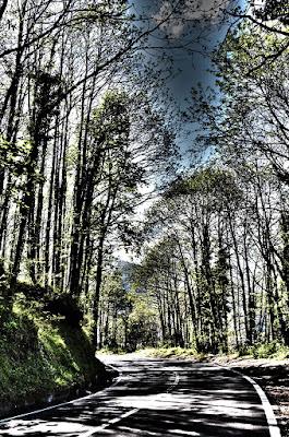 Il sentiero della quiete di mikkk