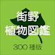 街野植物図鑑 300種版