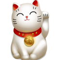 DrCat Accounting icon