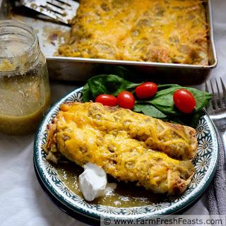 Potato, Tatsoi, and Caramelized Onion Enchiladas