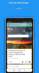 Mini Browser 4