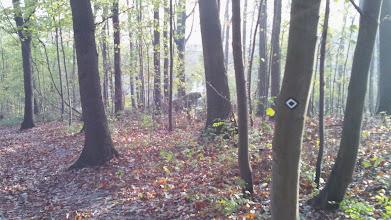 Photo: Der obere (Not-?)Ausgang der Bunkeranlage Funcke & Hueck (im Dritten Reich ein Rüstungsbetrieb) vom Rauten-Weg aus.