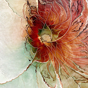 Aflame by Amanda Moore - Illustration Abstract & Patterns ( fractal abstraction, abstraction, digital art, fractal art, fractal, digital, fractals )