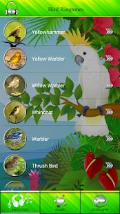 Ptáci Vyzvánění - náhled