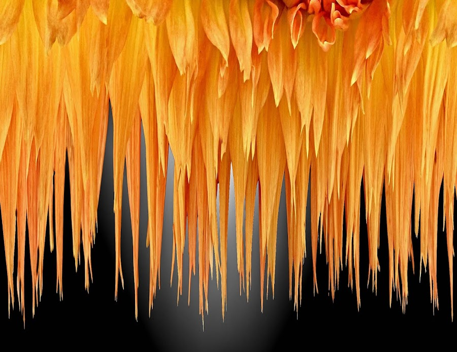 DPC 30 by Michael Moore - Digital Art Abstract (  )