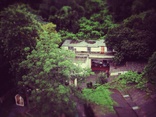 Countryside, hong kong, House, residence, villa, 屋, 鄉下, 香港, village house