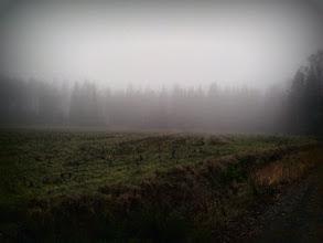 Photo: The Fog
