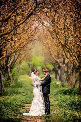 Wedding photographer Emilio Navas (emilionavas). Photo of 11.06.2015