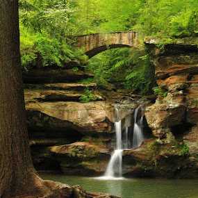 Old Man's Cave by Vickie Barnhill - Landscapes Waterscapes