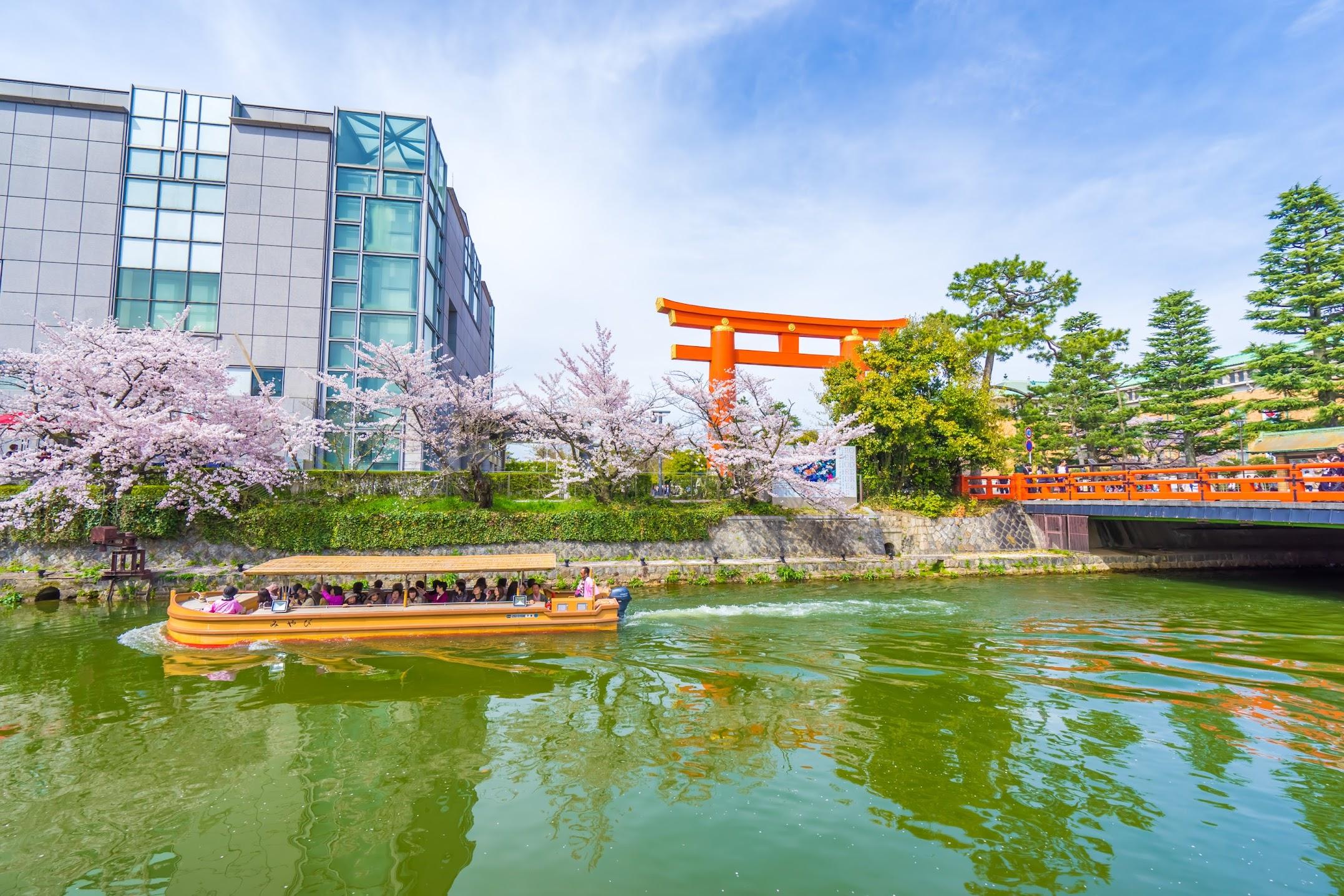 Kyoto okazaki canal cherry blossoms1