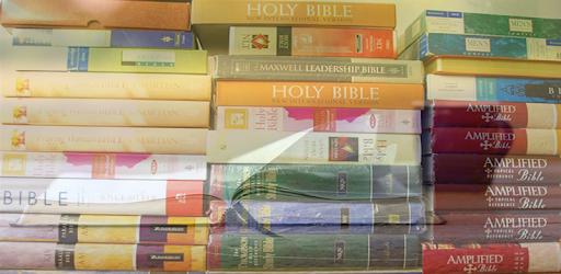 Msg Bible Pdf